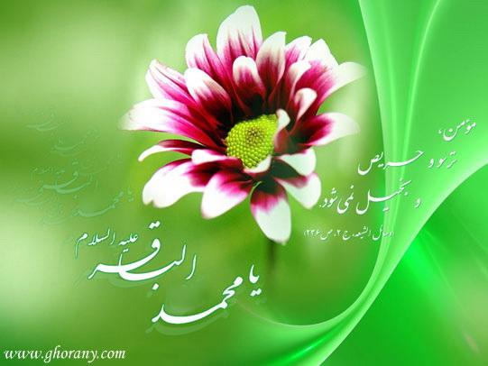 imam_bagher_veladat_88_2
